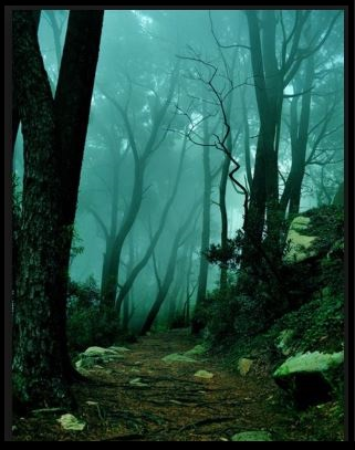 Sintra Portugal-the path